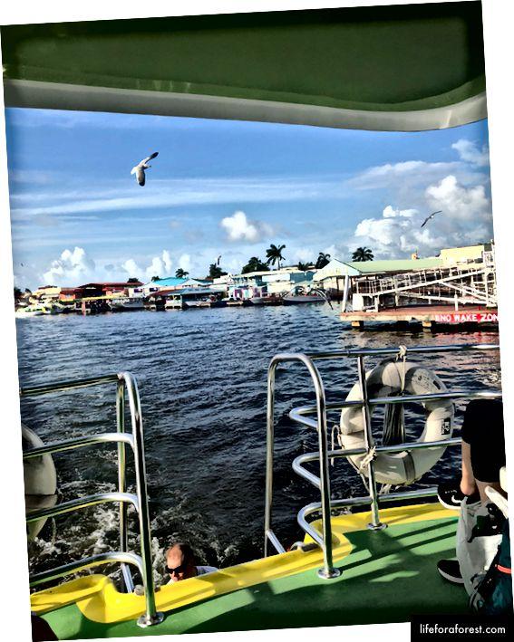 Utsikt fra vanntaxien med avgang fra Belize City.