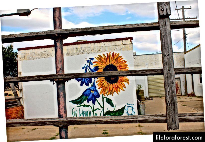 Một bức tranh tường ở Hays, KS. (Ảnh tín dụng: Oriana Schwindt)