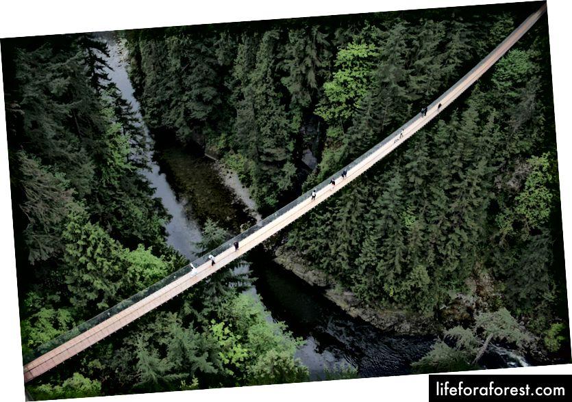 Hình ảnh qua Du lịch Vancouver