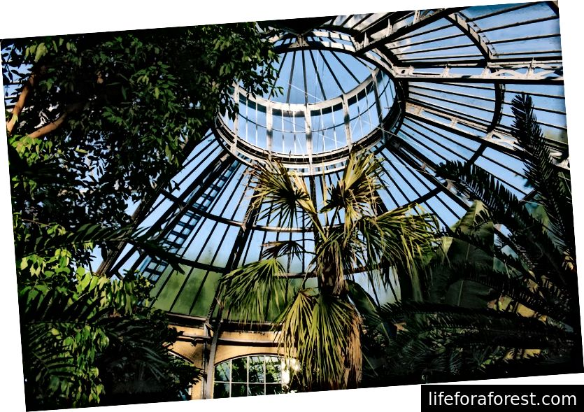 Eye Film Museum, Hortus Botanicus