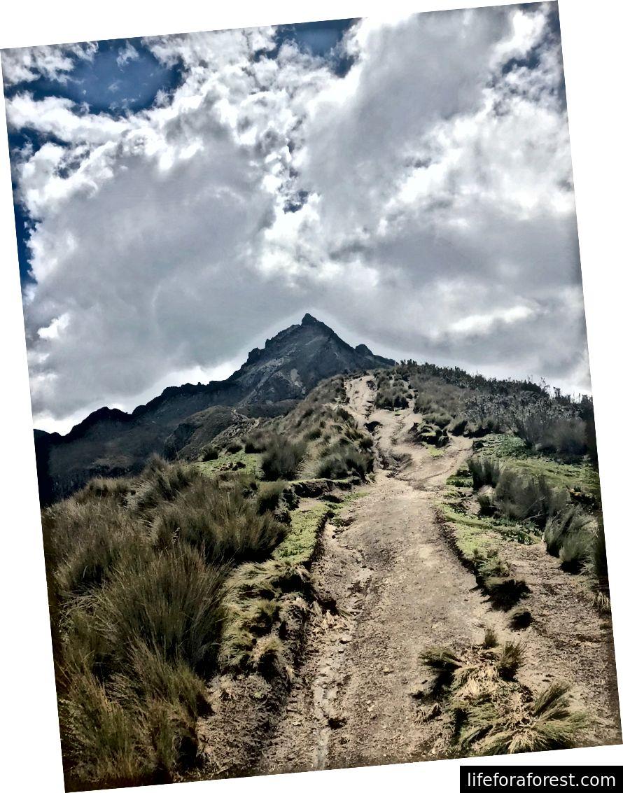 Utsikt mot toppen av Rucu Pichincha (15, 407 ft) fra stien via Teleférico Quito