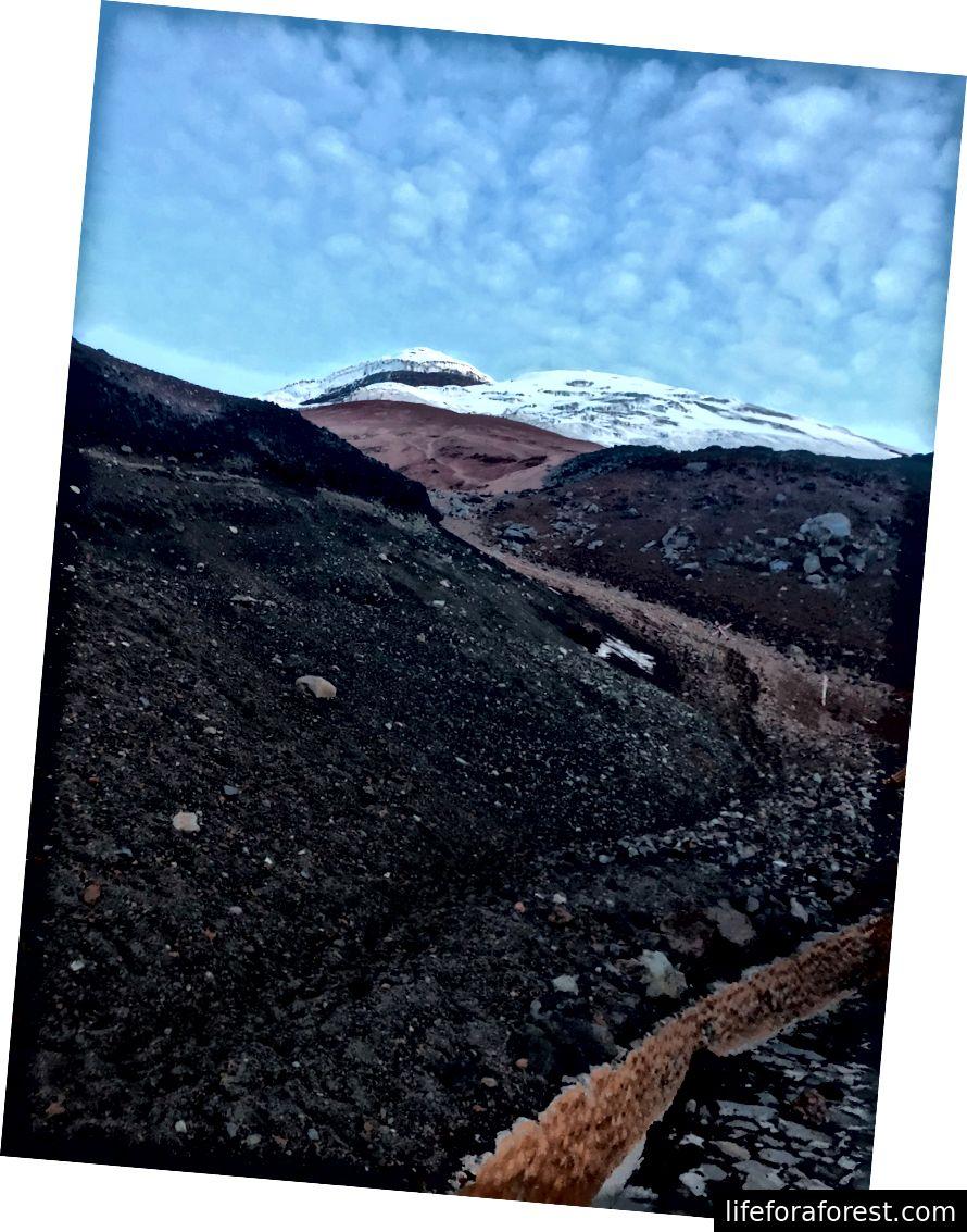 Toppmøtet til Cotopaxi i avstanden fra området bak José Rivas Refuge (15.960 ft.)