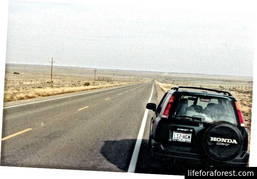 Mạnh mẽ và hài lòng Tôi đi du lịch trên con đường rộng lộ - Walt Whitman [Ảnh Shay]