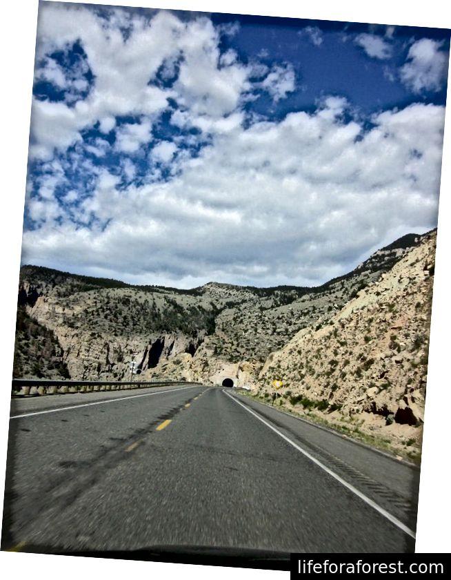 Tunnel som fører til Yellowstone [Shay-foto]