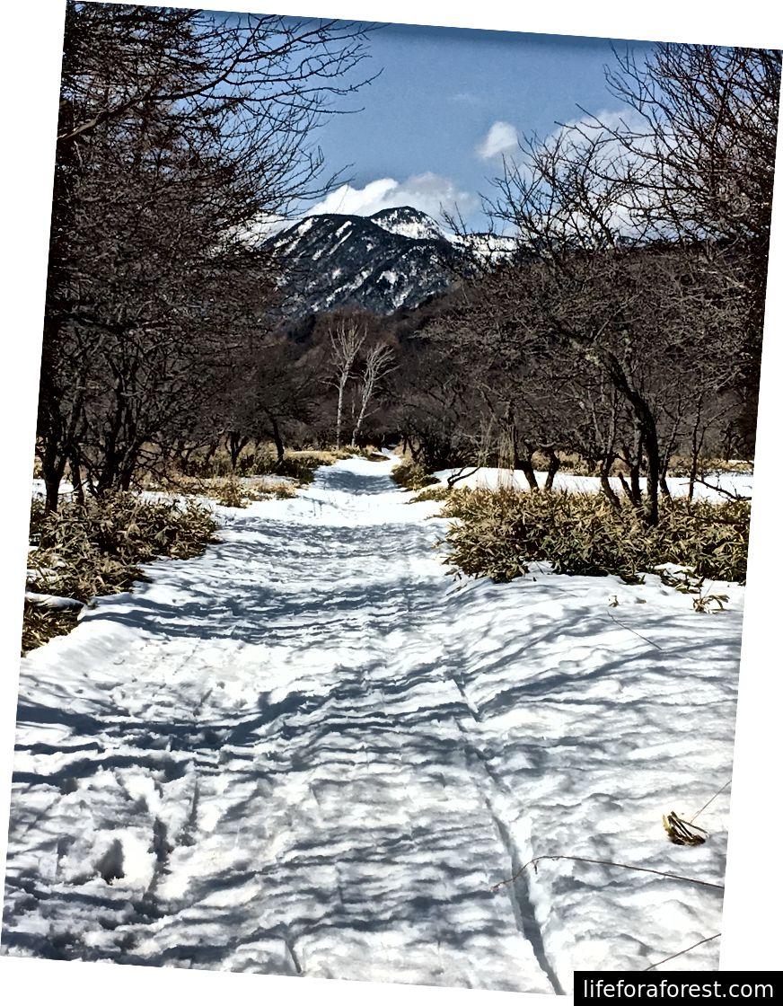 Lumesaharada Nikkō rahvuspargis.