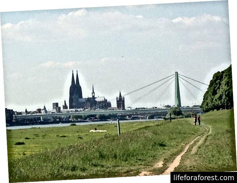 Cologne, Allemagne, où Amy a séjourné pendant son STA