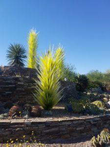 Glass og biologi ved Phoenix Botanical Gardens
