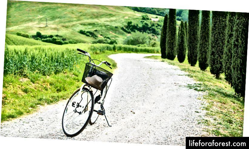 De ce să nu luați legătura cu natura și să încercați un nou mod de a călători? Toscana, Italia.
