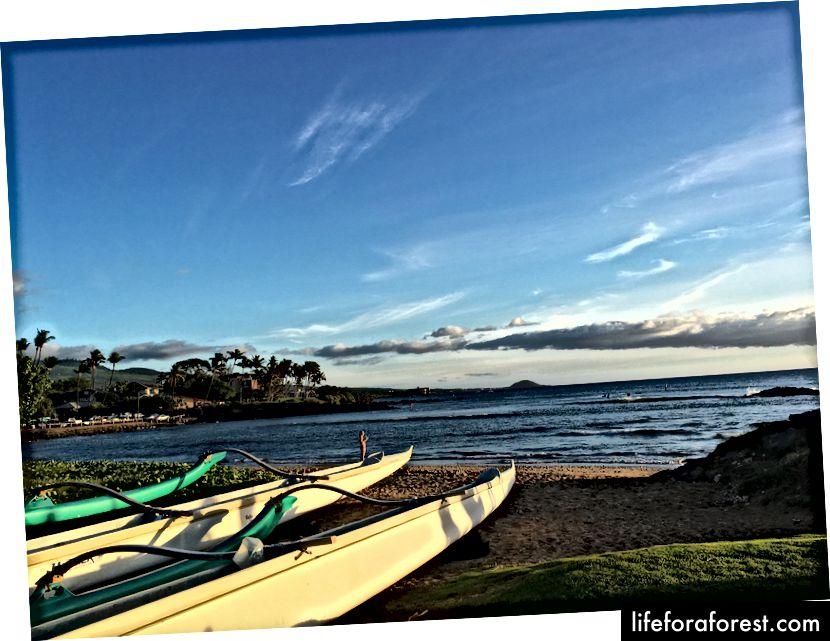 Kihei, Maui, Hawai'i. (Fotokreditt: Oriana Schwindt)