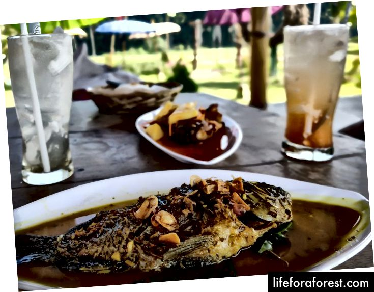 Jeg kan fortsatt spise fisk noen ganger, siden jeg ikke har lest om deres psykologiske prosess ennå.