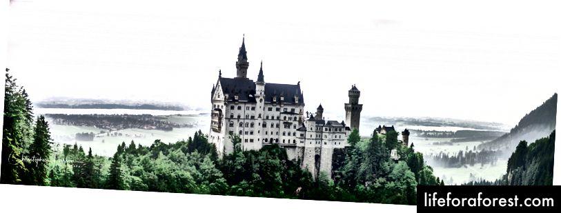 Neuschwanstein Castle, Tyskland © ChristopherLarson