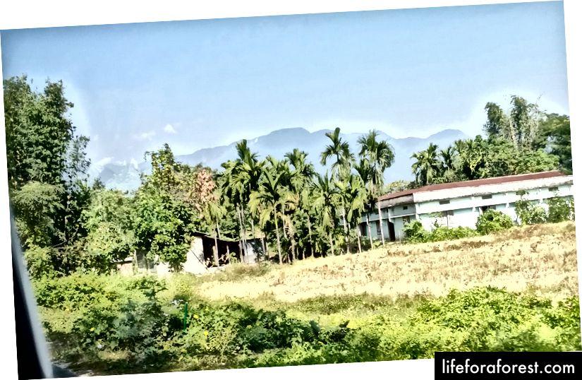 Arunachal Pradesh mọc lên như một bức tường khi chúng ta đi từ vùng đồng bằng Assam.