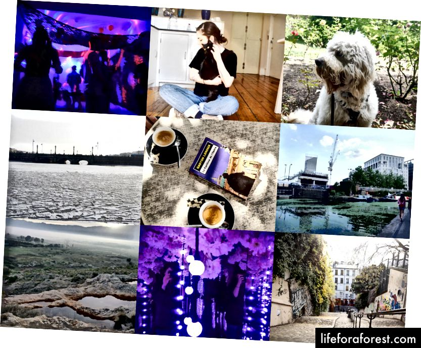 Kiri ke kanan, atas ke bawah: ulang tahun sahabatku, Patti, anjing cantik yang tinggal bersamaku, berjalan melintasi danau beku di Kopenhagen, Paris pada bulan Agustus, salah satu tempat favoritku di London, di puncak air terjun di luar Cape Town, instalasi seni di London, dan Paris pada bulan Desember.