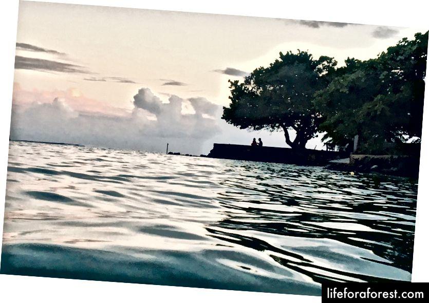 Moorea, French Polynesia ภาพถ่ายโดย Donna Kos