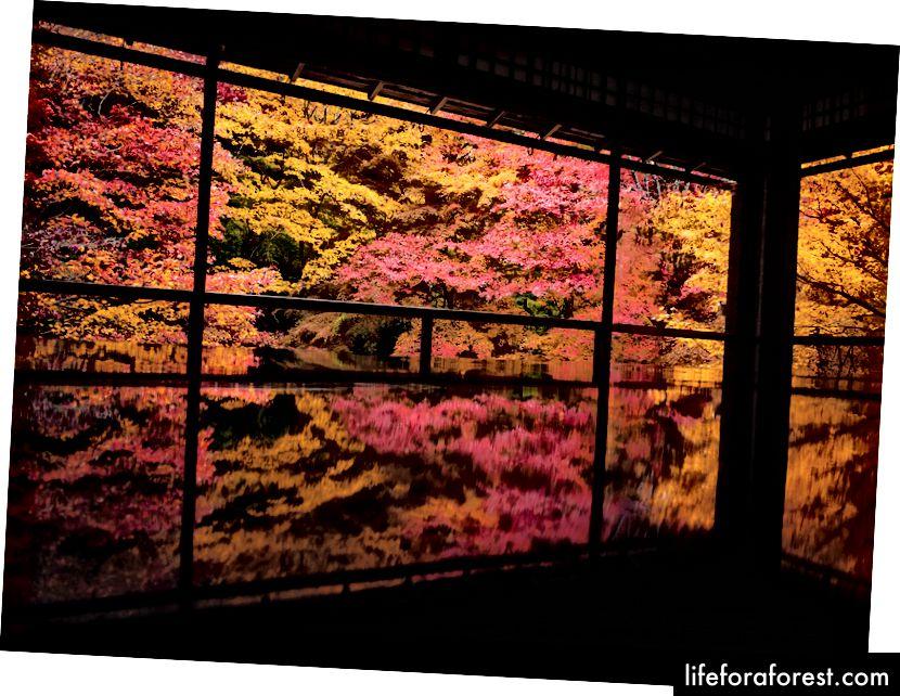 Rurikouin, Rakuhoku Kyoto