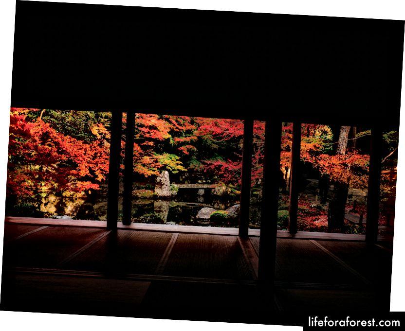 Rengeji, Rakuhoku Kyoto