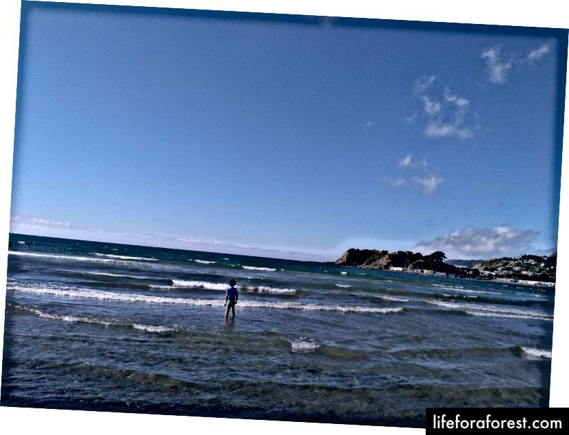 Imej: Seorang kanak-kanak bermain di pantai di NZ. Sumber: harta pengarang asal. Tolong jangan gunakan tanpa kebenaran bertulis.