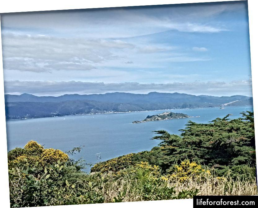 Imej: pemandangan gunung di bawah, di New Zealand. Sumber: harta pengarang asal. Tolong jangan gunakan tanpa kebenaran bertulis.