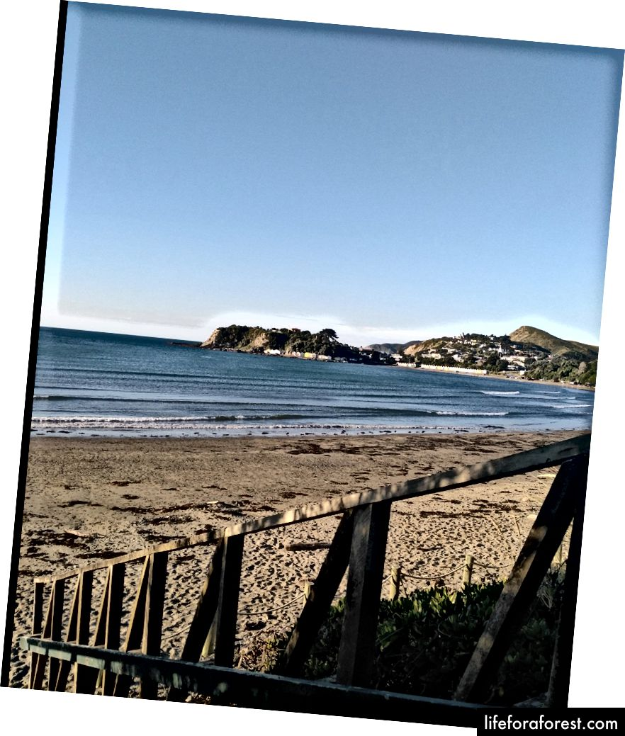 Hình: Một lan can dẫn xuống một bãi biển ở New Zealand. Nguồn: tài sản gốc của tác giả. Xin vui lòng không sử dụng mà không có sự cho phép bằng văn bản.