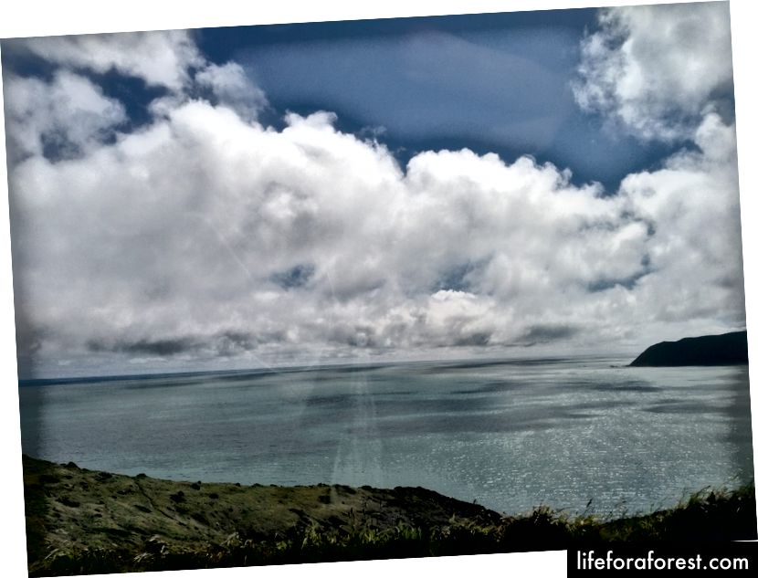 Hình: Quang cảnh phía tàu hỏa của mây, nước, khu vực cỏ ở New Zealand. Nguồn: Tài sản gốc của tác giả. Xin vui lòng không sử dụng mà không có sự cho phép bằng văn bản.