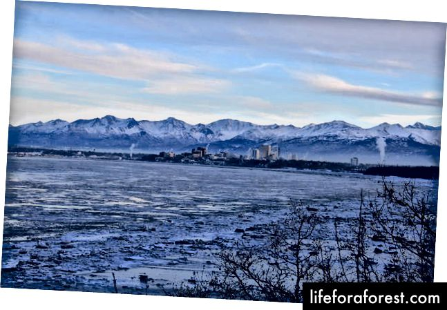 Anchorage dari Earthquake Park - Karl Sander