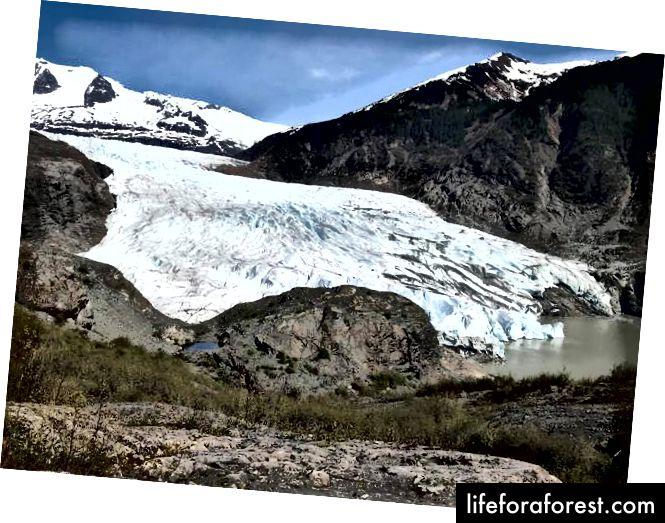 مندنهال الجليدية - كارل ساندر
