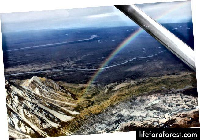 Denali Flightseeing - كارل ساندر