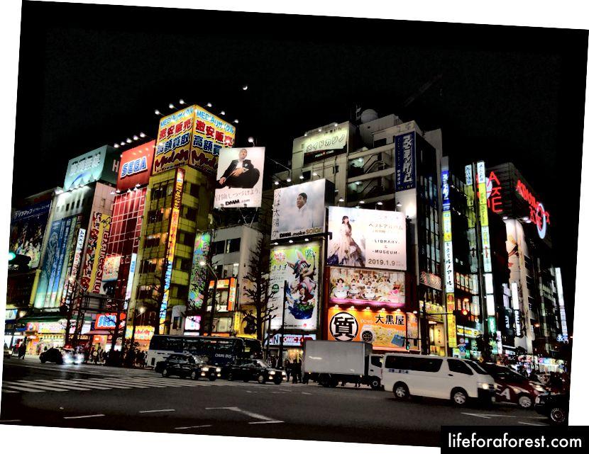Akihabara tętni tłumami o każdej porze dnia, szukając świetnej okazji lub rzadkiego klejnotu, który można dodać do ich kolekcji.