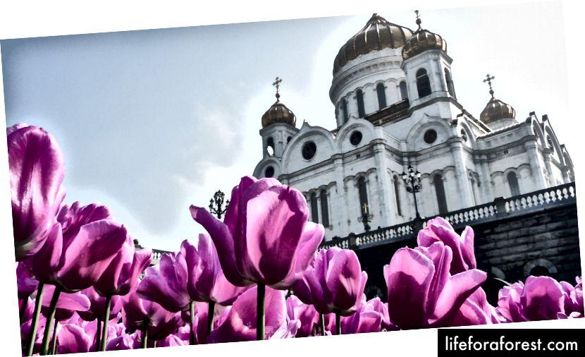 Kristi frelseres katedral, Moskva © ChristopherLarson