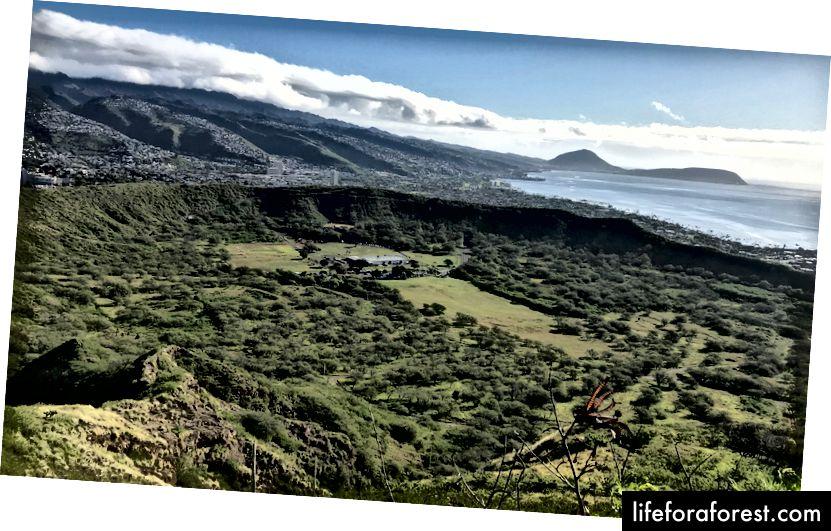 Utsikt over krateret fra toppen av Diamond Head