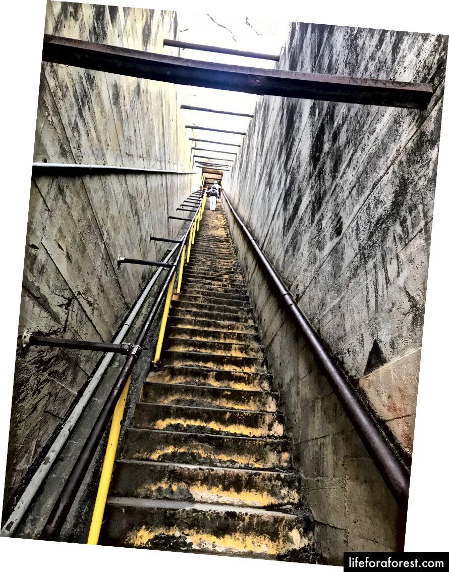 Tận hưởng cầu thang gần đỉnh núi!