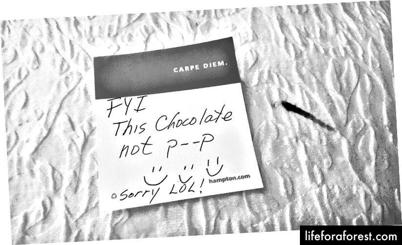 Vâng, tôi thực sự đã để lại ghi chú này vì một vết sô cô la.