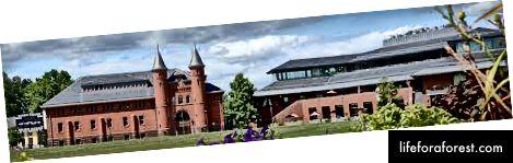 Bill Belichicks alma mater