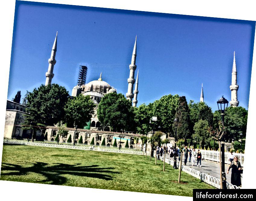 Den blå moskeen med hagene rundt