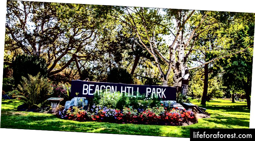 Den naturskjønne Beacon Hill Park