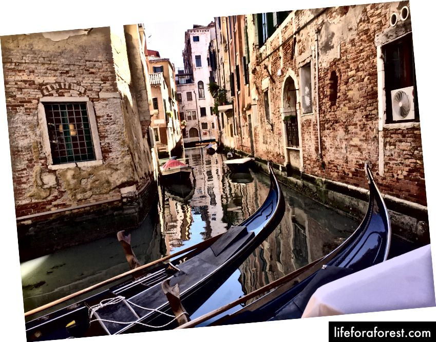 Venetsiya, 2019 yil aprel