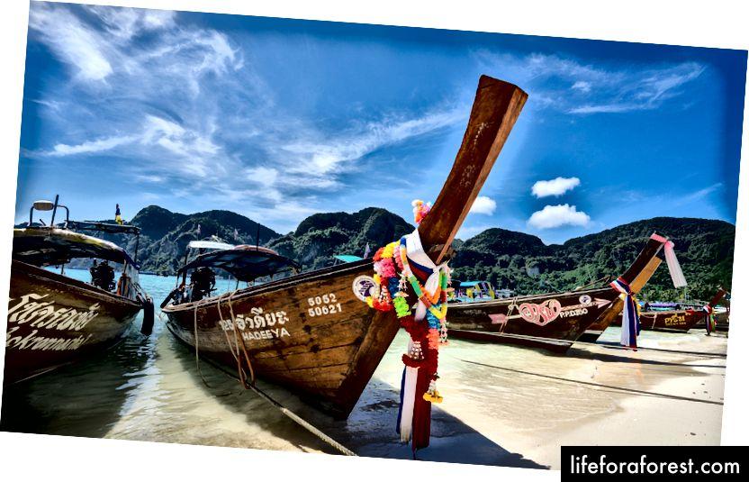 Zdjęcie Frankie Spontelli z unsplash.com