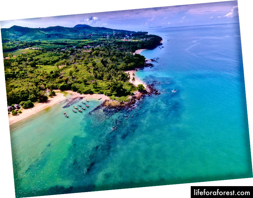 Zdjęcie Humphrey Muleba, pexels.com
