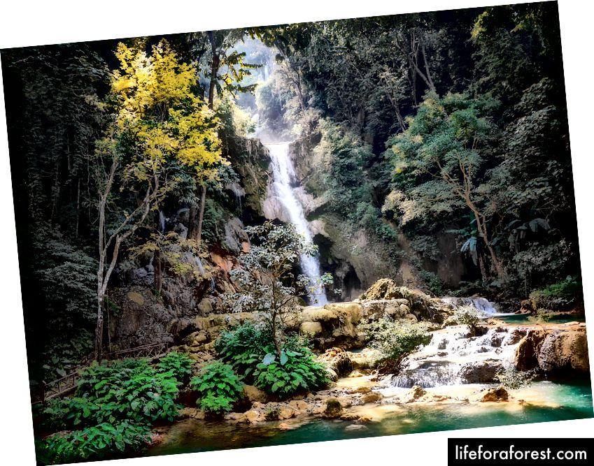 Zdjęcie Humphrey Muleba, pixel.com