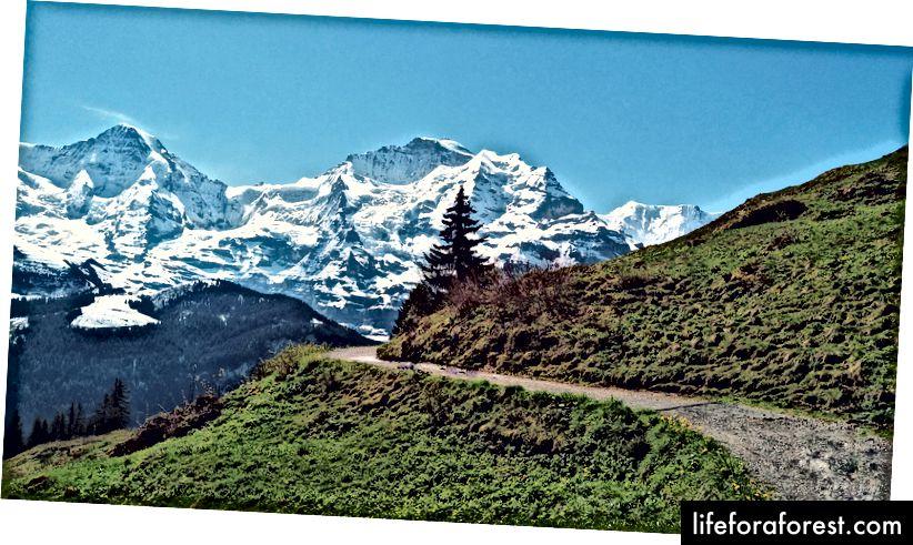 For meg er fotturer den beste formen for gratis underholdning - Lauterbrunnen, Sveits.