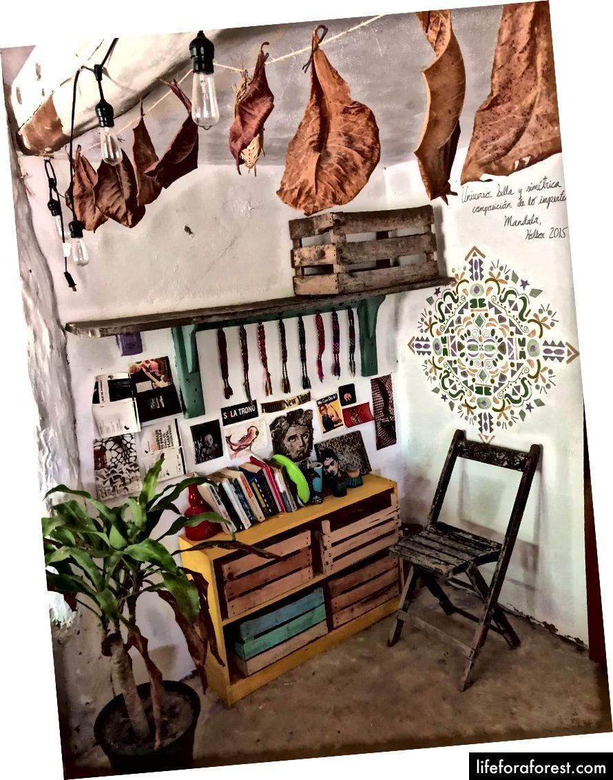 Nejroztomilejší stará paměťová jednotka zásobníku KAŽDÉ! (Holbox, Mexiko)