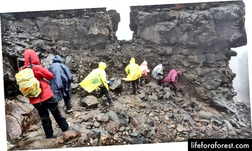 Regnfulle forhold og glatte bakker. Kilimanjaro-fjellet, Lemosho-ruten. Fotokreditt. S. Kusamba
