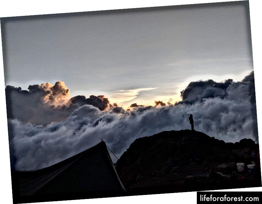Trekker ved Base Camp ved Barafu Hut, Kilimanjaro-fjellet. Fotokreditt. M. Powel