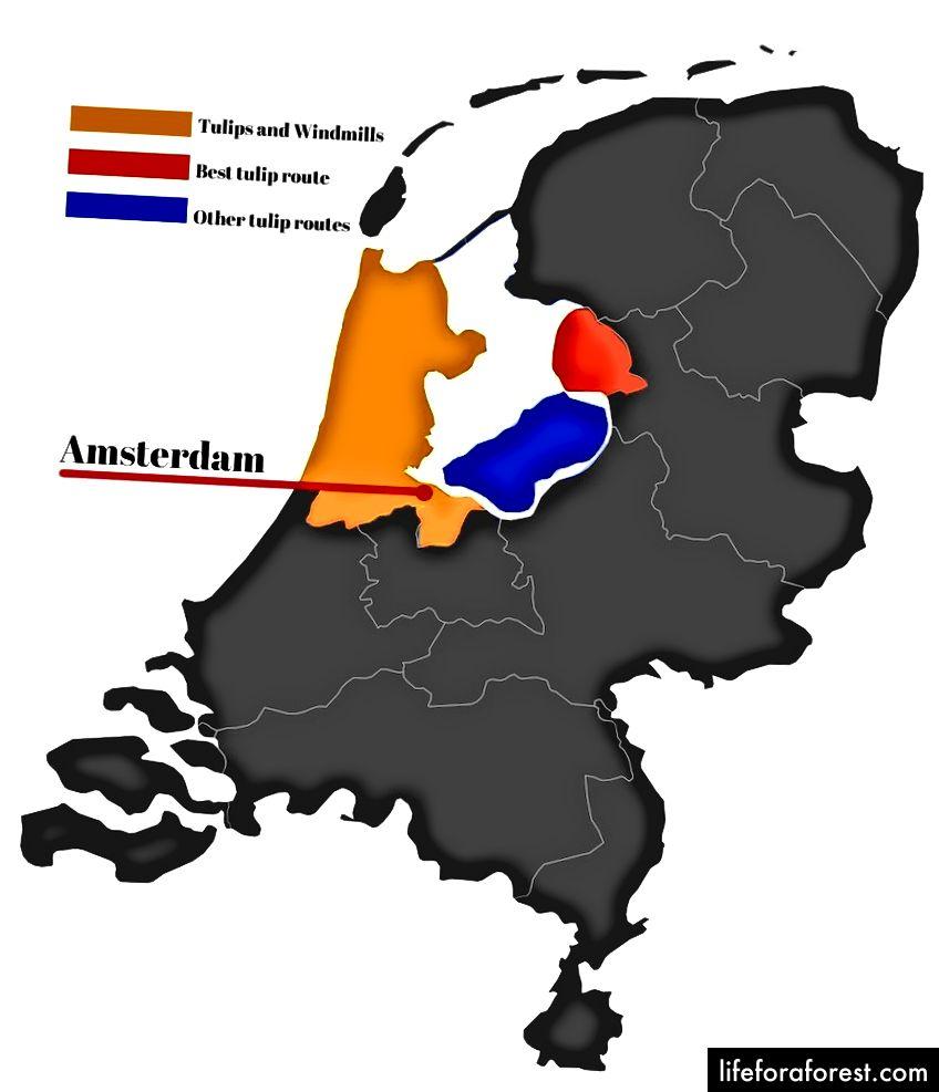 Bản đồ các tỉnh của Hà Lan, với các khu vực hoa tulip © ChristopherLarson
