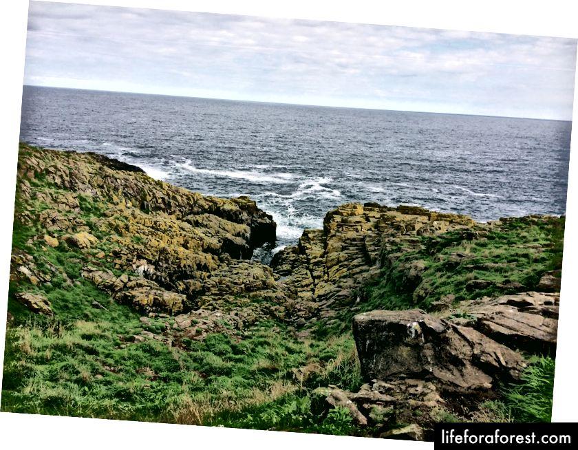 Warna-warna tak terduga dari lanskap yang tidak rata di Isle of May.