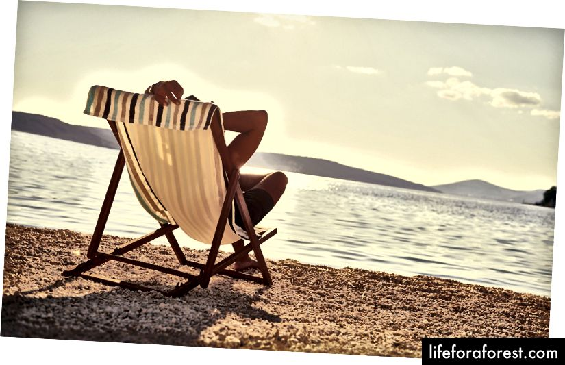 Một số snaps kỳ nghỉ tự mãn của bạn có thể cung cấp nhiều thông tin hơn bạn dự định