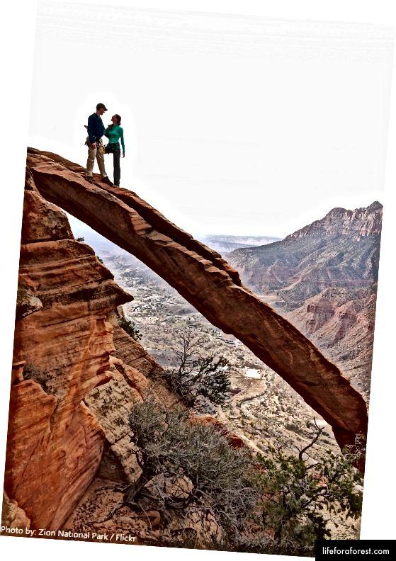 Fotografie: Národní park Zion (Flickr)