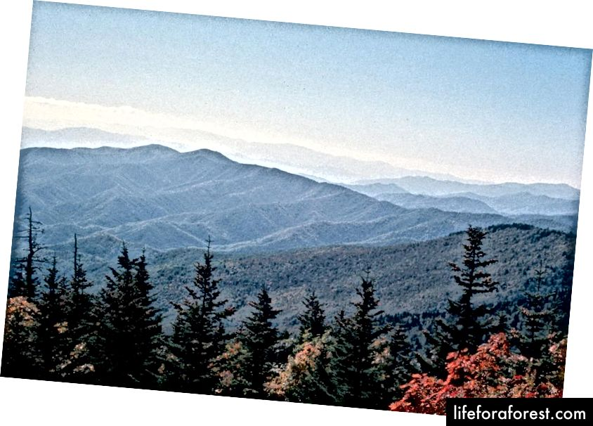Fotografie: National Park Service