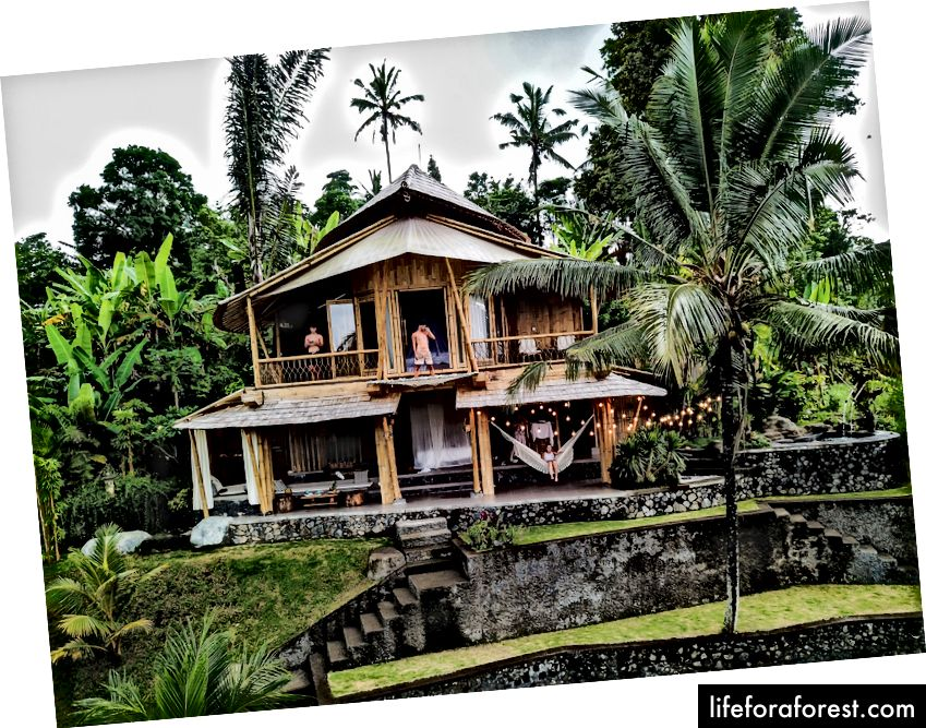 Slavný celobambusový airbnb dům pár hodin severně od Ubudu v džungli