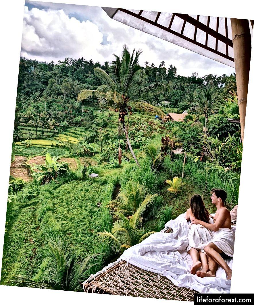 Ráno na venkovní houpací síti s výhledem na rýžové terasy